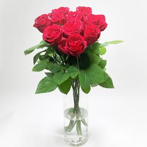 Rose  レッドエレガンス 10本 (JAひまわり バラ部会)