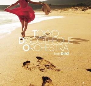 Tokyo Discotheque Orchestra feat. bird  EP (12cm CD)