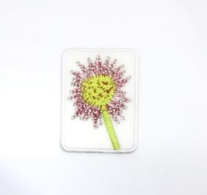 モウセンゴケ■食虫植物