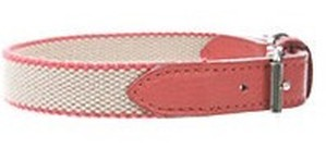 Dog collar 犬 カラー 首輪 35 BG x red