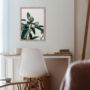 BOTANICAL3 / P047 / 植物ポスター
