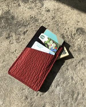 【限定】カードケース インサートスウィッチ シャーク