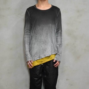 Layer L/S〈Alternative-Monotone〉