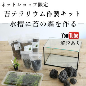 苔の森が作れる 25cm水槽で作る苔テラリウム作製キット◆選べる2タイプ/動画解説付き