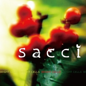 sacci/BRIGHT CELLS