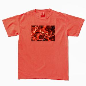 紅_フォトTシャツ赤(受注販売)