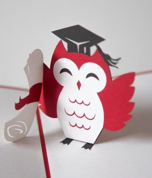 Graduation Owl
