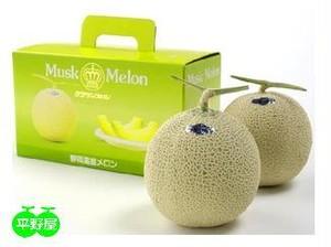 静岡産マスクメロン2個化粧箱入り 2.5kg相当・本州送料消費税込み
