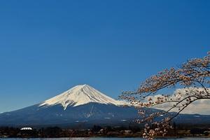 富士山と桜 05