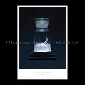 ポストカード「月光結晶標本」
