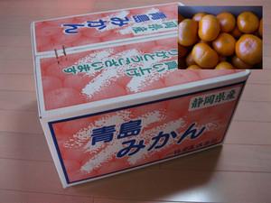 まきのみかん 竹 10kg