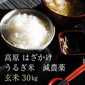 うるぎ米(玄米)30kg・<減農薬>特別栽培米 2018年収穫 玄米割引有り