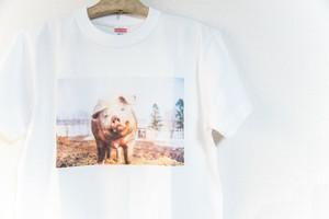 豚Tシャツ