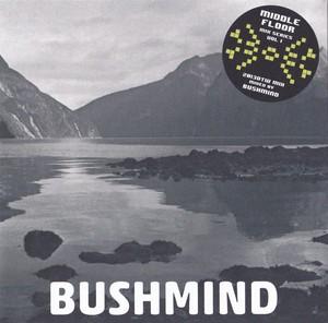 BUSHMIND / 2013DTW MIX