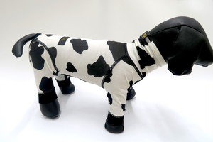 アウトラスト COWCOW  4leg サイズ4 / seven seas dog(セブンシーズドッグ)