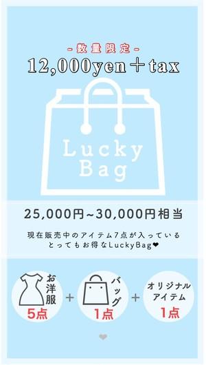 Lucky Bag (¥12,000+tax)