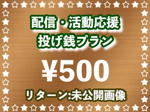 【コロナ支援】配信・活動 応援投げ銭プラン ブロンズ