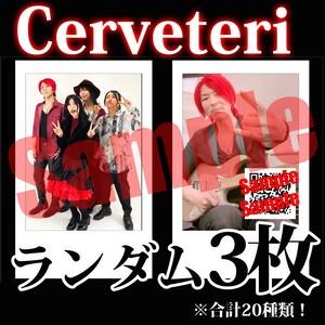【チェキ・ランダム3枚】Cerveteri