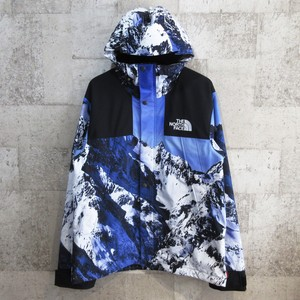 SUPREME × TNF 17AW Mountain Parka
