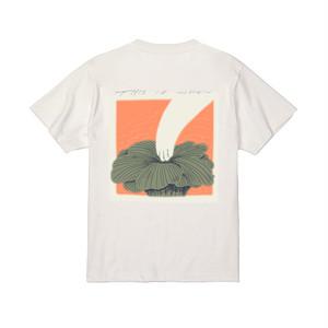 チャリティTシャツ やかはら /  this_is_when