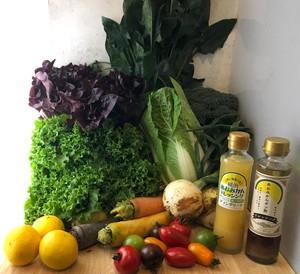 濱の八百屋厳選お野菜10種+あおみかんドレッシング2本のサラダセット(送料込み)