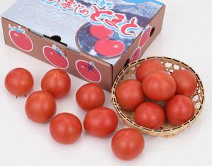 冬季限定 寒じめトマト〔送料無料、トマト、桃太郎トマト、完熟トマト、甘いトマト〕