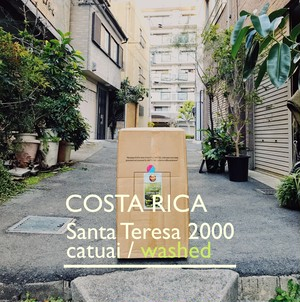 COSTA RICA [washed] -中浅煎- 100g