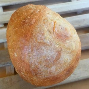白パン(小)