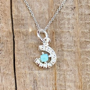 Larimar Hoseshoe Necklace