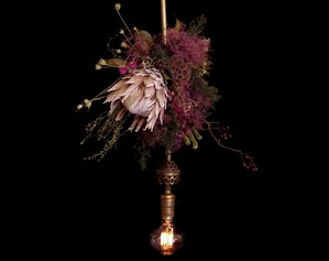 Protea Purple&Red Dried flower 1920us Antique hanging lamp