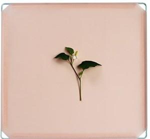 【入荷予定】簡易 卓上 パーテーション 35cm×35cm 仕切りブース 衝立 間仕切り(ピンク)