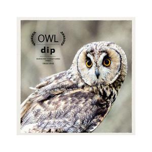 [dip] OWL