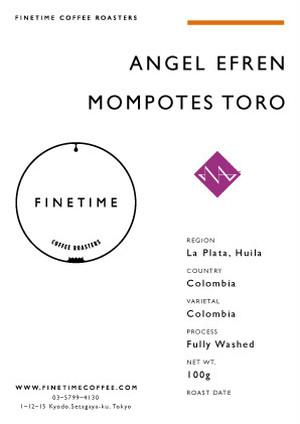 ANGEL EFREN MOMPETOS TORO
