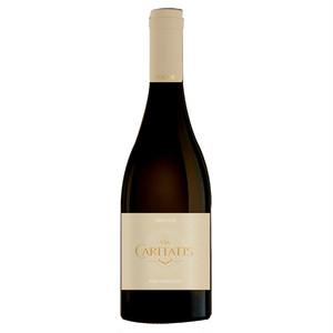 ヴィア・カリタティス ヴォックス 赤/フランス 聖マドレーヌ修道院ワイン