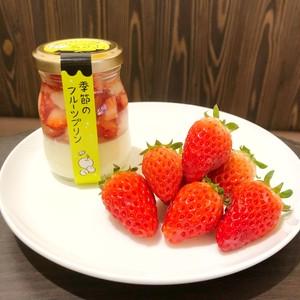 【期間限定】湯田中温泉プリン本舗 季節のフルーツプリン・信州イチゴプリン 3個セット