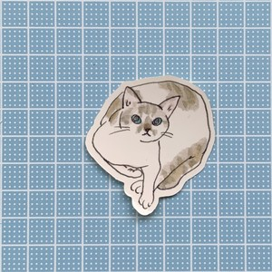 【S13】ステッカー(calendarcat)