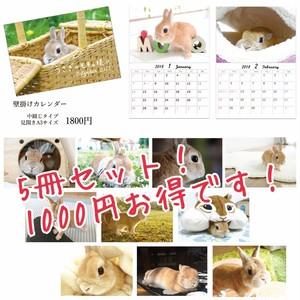 1000円お得!2018年壁掛けカレンダー 5冊セット うさぎのモキュ様