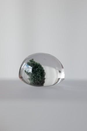 Chlorite Quartz  - 018