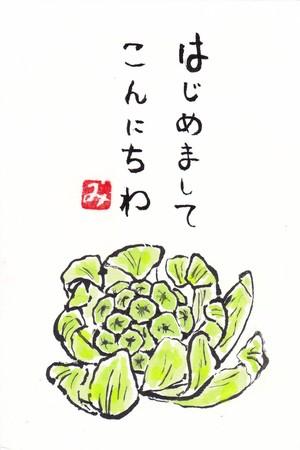 絵葉書(ふきのとう)