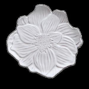 Anemone plate / アネモネ デザートプレート 22.0cm