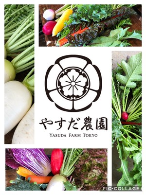 『秋色』お任せ旬野菜セットL100サイズ