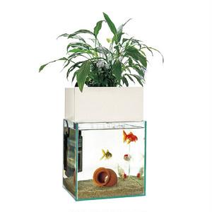 昇運ビオトープ 25cm水槽基本セット(ガラス水槽+観葉植物植え付けろ過装置+水中循環ポンプ+パワーストーン+底砂)+水槽おそうじ手袋&水槽おそうじパッドをプレゼント!