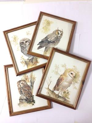 Owl print in frame