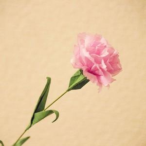 【おりがみキット】立体カーネーション(ピンク)