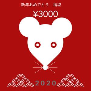 新年おめでとう福袋   ¥3000