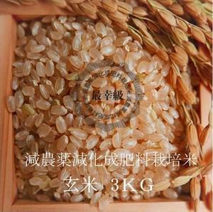 減農薬栽培 〈令和2年産〉南魚沼産コシヒカリ 玄米3kg