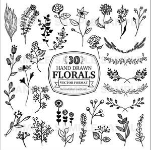 手書きグラフィック素材(Floral・Vector)