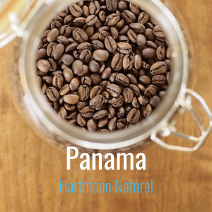 《NEW CROP》Panama Hartmann Natural 100g