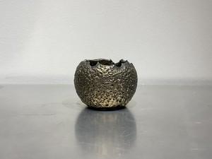 amane 宮下 将太 『Gold Dwarf Pot 』 S