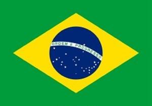 2021年 3月限定 ブラジル さくらブルボン 粉 100g